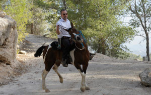 הרב שלוחש לסוסים