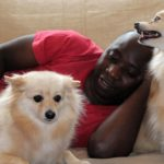טיפול באמצעות כלבים